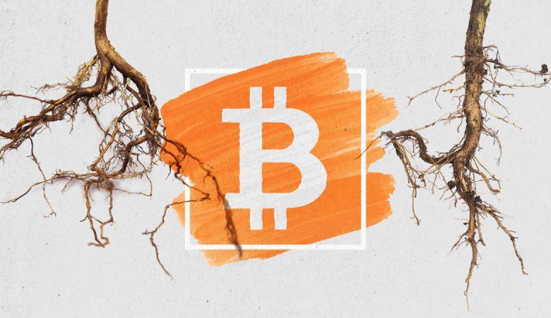 Технология Taproot и подписи Шнорра оформлены в качестве официальных предложений по улучшению биткоина