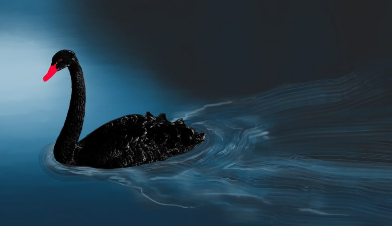 """Третий """"Черный лебедь"""" может стать последним для фитаных валют"""